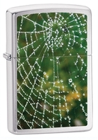 Image Zippo Wet Spider Web Lighter, Brushed Chrome